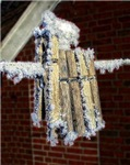 Iced Clothespins