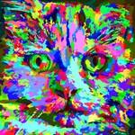 Pop Art Kitten