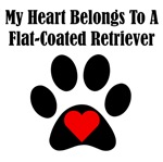 My Heart Belongs To A Flat-Coated Retriever
