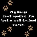 Well Trained Corgi Owner