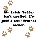 Well Trained Irish Setter Owner