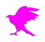 Pink Eagle Silhouette
