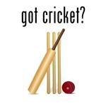 got cricket?