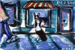 Boston Terrier Pet Shop