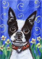 Boston Terrier flowers portrait design
