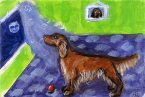 IRISH SETTER sees moon Design