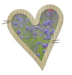Pretty Lavender Flowers in a Heart