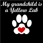 Yellow Lab Grandchild