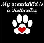Rottweiler Grandchild