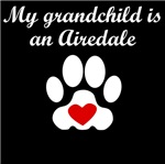 Airedale Grandchild
