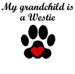Westie Grandchild