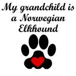 Norwegian Elkhound Grandchild