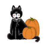 Black Cat and Pumpkins