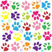 Puppy Paw Prints
