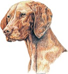 Viberant Vizsla Dog Products & Gifts