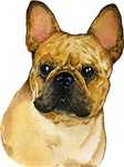 Fantastic French Bulldog Unique Gifts & Products