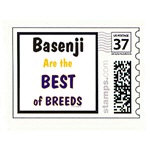 Basenji Best of Breeds Products & Gifts