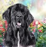 Newfoundland Painting