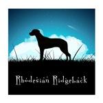 Nightsky Rhodesian Ridgeback