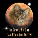 In Space No One Can Hear You Meow