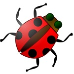 Ladybug Symbol