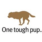 One tough pup.