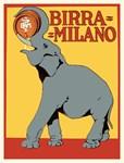 Elephant, Beer