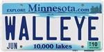 Minnesota Walleye