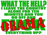 Why'd You Obama Up America? T-shirts & Gifts
