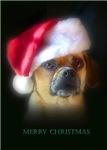 A Puggle Christmas