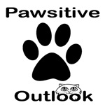 Pawsitive Outlook Cat