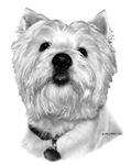 Westie items with black and white design