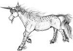 Zephyr the Unicorn
