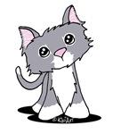 Skinny Kitty Storm