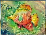 tropical fish, art