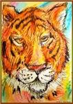 Tiger, colorful wildlife art