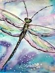 Butterflies,Dragonflies, Moths, Bugs