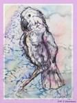 Cockatoo, bird art!