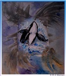 Whale! Killer Whale! wildlife art!