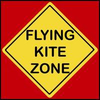 FLYING KITE ZONE