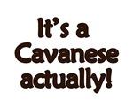 Cavanese