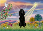 CLOUD ANGEL<br>& Black Standard Poodle #1