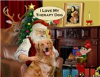 SANTA AT HOME<br>Golden Retriever Therapy Dog