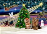 CHRISTMAS MAGIC<br>& 2 Yorkshire Terriers (6,7)
