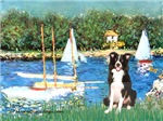 SAILBOATS<br>& Border Collie