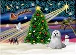 CHRISTMAS MAGIC<br>& Maltese #9