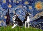 STARRY NIGHT<br>& 2 Boston Terrier