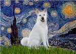 STARRY NIGHT<br>& Akita