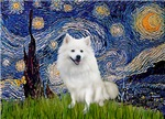 STARRY NIGHT<br>& American Eskimo Dog
