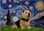 STARRY NIGHT<br>Norwich Terrier